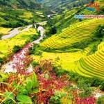 Tour du lịch Sapa Lao Chải – Tả Van 2 ngày 3 đêm giá rẻ