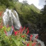 Khám phá vẻ đẹp thơ mộng của thác Cát Cát Sapa