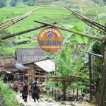 Bản Cát Cát – điểm du lịch hấp dẫn tại Sapa