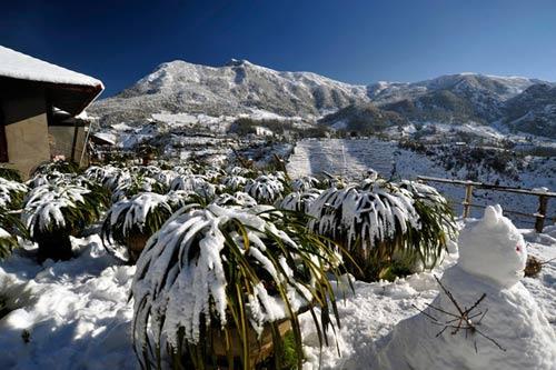 Tuyết dầy phủ trắng thị trấn Sapa