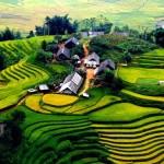 Tour du lịch Sapa – Lao Chải – Tả Van 2 ngày 3 đêm