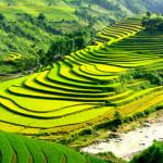 Khám phá 13 sự thật thú vị về Sapa Lào Cai
