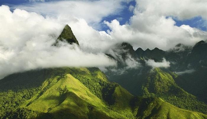 Ngũ Chỉ Sơn huyền ảo trong sương sớm và mây mù