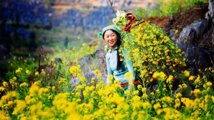 Sủng Là- thiên đường hoa cải ở Hà Giang