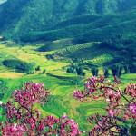 Khám phá du lịch Sapa mùa hè