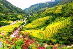 Thung lũng Mường Hoa đẹp thơ mộng từ trên cao
