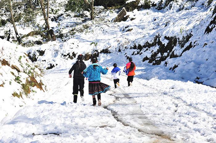 Vui chơi trên nền tuyết trắng Sapa