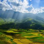 Du lịch Mù Cang Chải – Suối Giàng – Tú Lệ 3 ngày 2 đêm