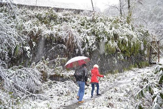 Các cặp đôi đi săn tuyết