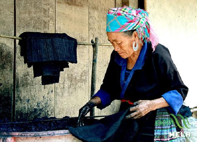 Kỹ thuật nhuộm chàm của đồng bào người Mông Sapa
