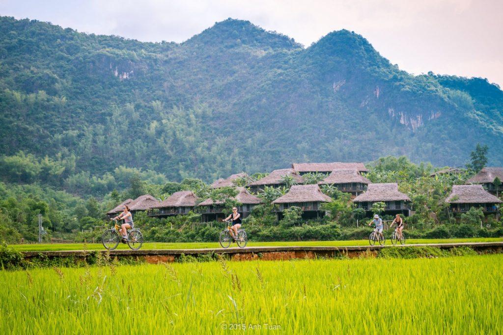 Du khách đạp xe khám phá vẻ đẹp của thung lũng Mai Châu